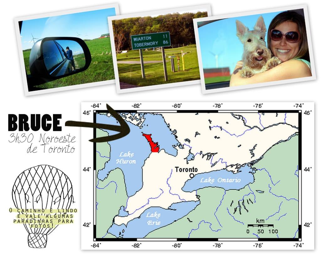 localizac3a7c3a3obruce_gnc-copy
