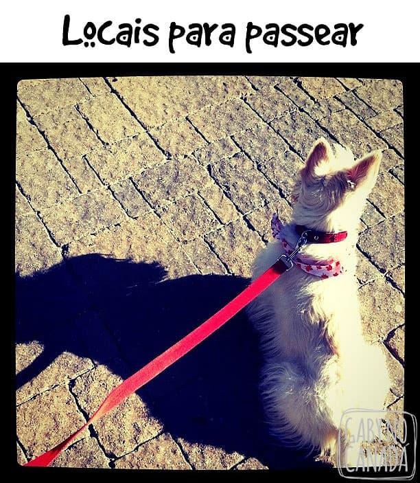 Locais
