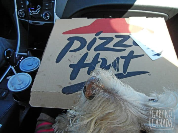 Jojoe é sempre o mais animado quando fazemos lanche no carro!