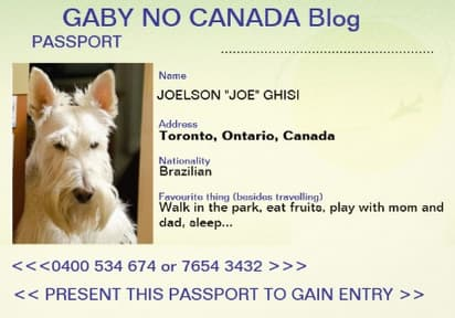 Passport_Joe