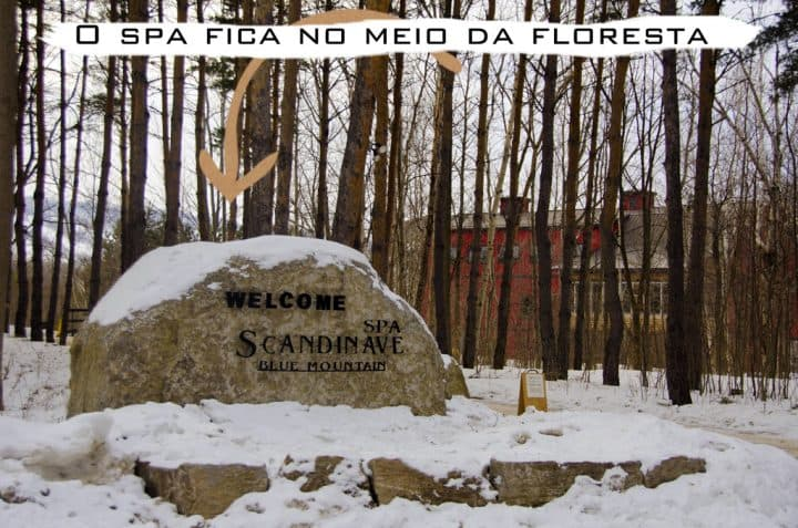 ScandinaveSpa_GNC1