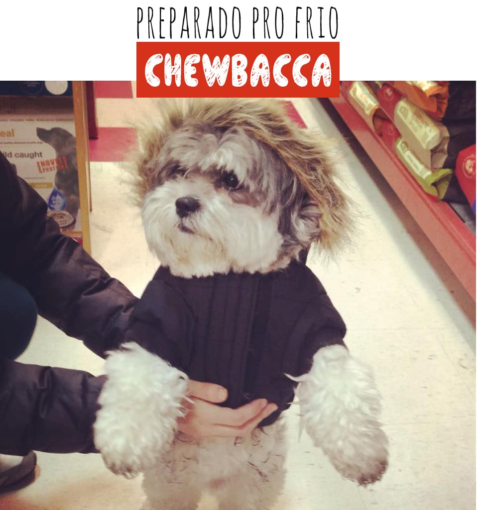 GP_Chewbacca2
