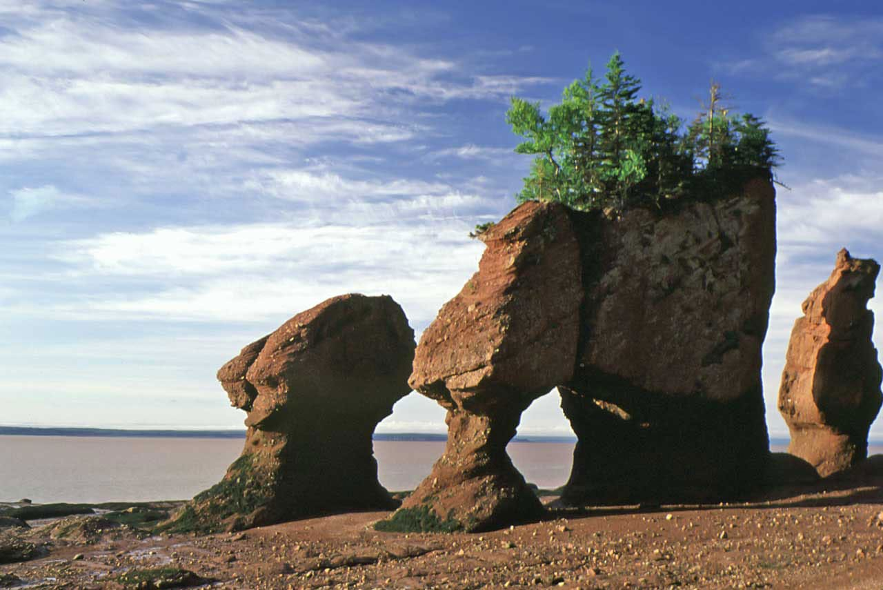 Fonte: Bay of Fundy Tourism